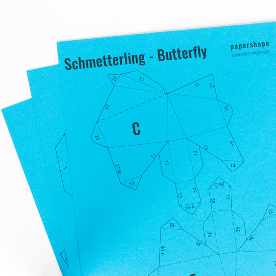 Step: Download the butterfly template
